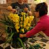 喜迎羊年春节 越南从中国进口大量花卉