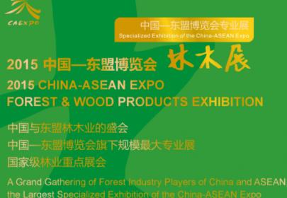 2016年13中国—东盟博览会第7届林产品与木制品展览会