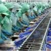 越南水产品出口位居世界第三